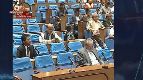संसदमा विरोध र समर्थनमा तँछाड - मँछाड । Nirantar B