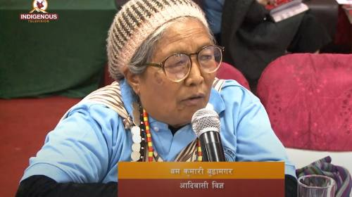 Indigenous voice 182 || जहाँ प्रथाजनित संस्था सक्रिय छ,, # Hyolmo, NIWF,