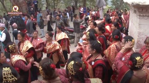 Indigenous voice _184 || साँखुको स्थापना || हलि ने